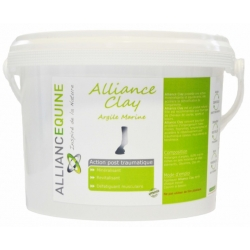 Alliance Equine - Clay