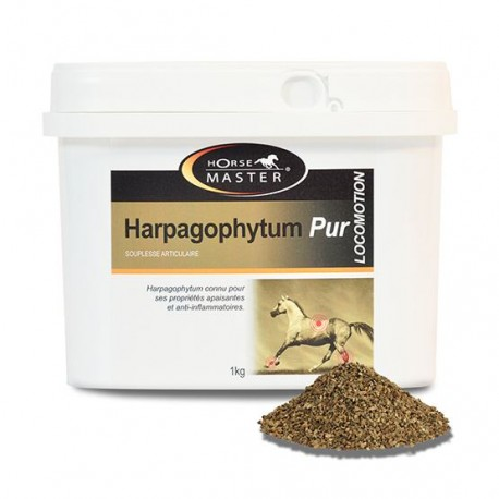 Harpagophytum pur