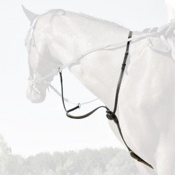 Martingale C-Cure In Horse We Trust